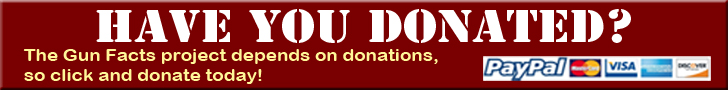 Donate-Top-Bottom-Promo-728x90